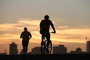 Ciclistas no por do sol