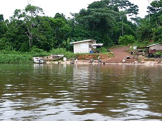 Com clima equatorial, Gabão tem clima e vegetação semelhantes à região amazônica