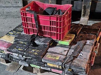 165 kg de cocaína que iriam para a Europa são apreendidos no Porto de Salvador