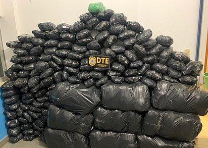 Cerca de 300 kg de maconha são apreendidos em Feira de Santana