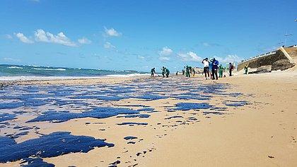 Uma tonelada de óleo é encontrada na Praia da Pituba