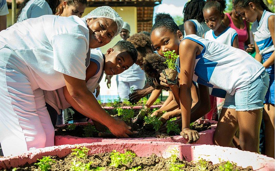 Comunidade de Ilha de Maré passa a contar com horta comunitária - Jornal Correio