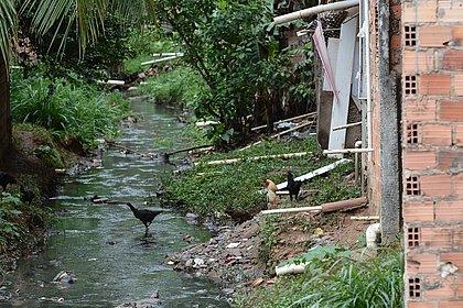 Mais de 50% dos municípios baianos têm problemas de saúde por falta de saneamento