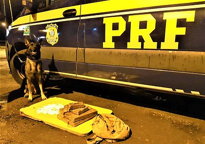 Passageira de ônibus é presa com 215 'papelotes' de cocaína e 7,25 Kg de maconha