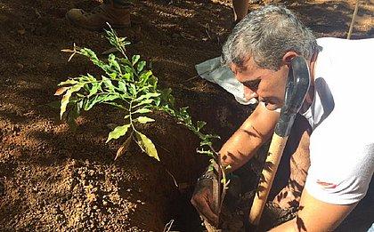 Mário Amici incentiva o plantio de árvores e adotou um consumo mais consciente