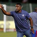 Bahia voltou a tropeçar em casa e agora soma sete jogos sem vencer na Série A