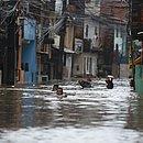Moradores precisam nadar para conseguir sair de casa