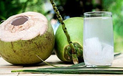 Produção de coco despenca no Brasil e na Bahia