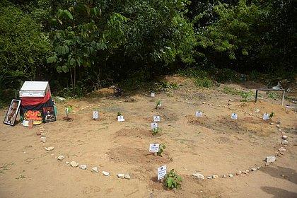 Doze árvores foram plantadas na Vila Moisés, local do crime