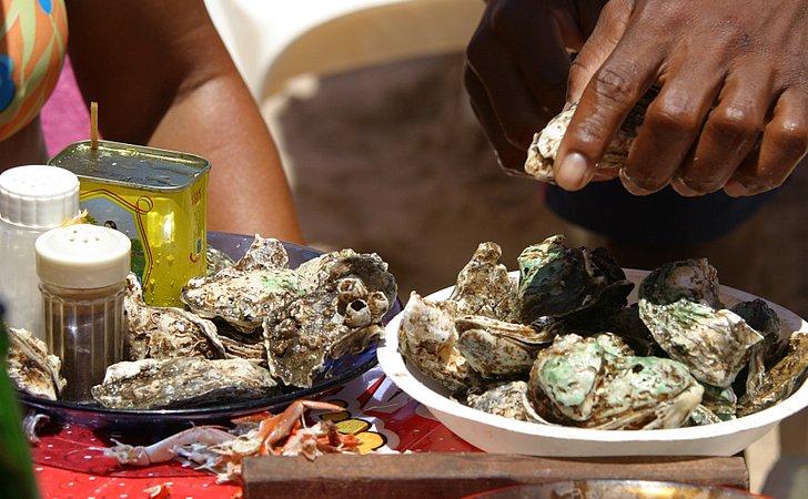Aberta a temporada de ostras