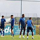 Mano Menezes analisa carências do elenco do Bahia antes de buscar reforços