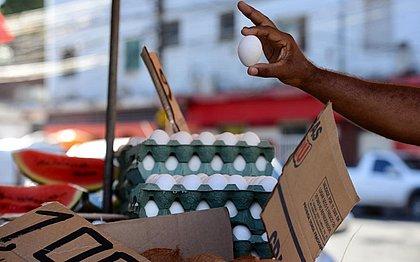 Mesmo com recorde de produção em 19 anos, preço do ovo aumenta na Bahia