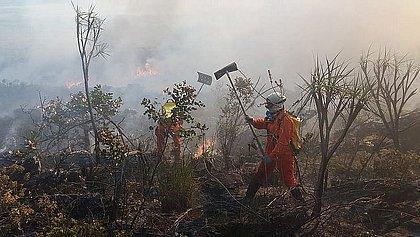 Especialistas alertam pra aumento dos incêndios florestais na Bahia