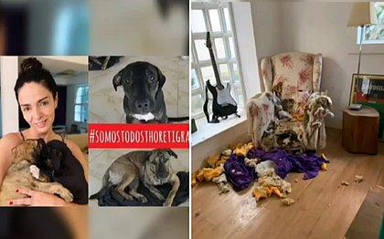 ONG expõe áudio de Claudia Ohana falando que devolveria cães: 'não tenho mais sala'