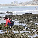 Voluntários na praia da Pituba, neste sábado (19)
