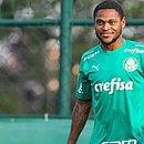 Atacante Luiz Adriano foi apresentado e recebeu a camisa 10 do Palmeiras