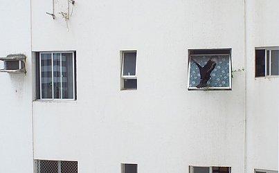 Caçando uma janelinha pra meter as caras, ontem