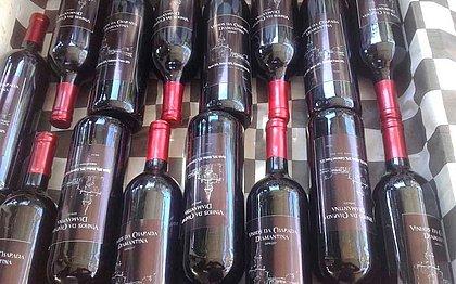 Novo 'terroir' baiano: produção de vinhos está em expansão na Chapada