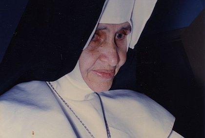 Irmã Dulce: 'Os milagres foram tão evidentes que o processo foi rápido', diz Dom Murilo