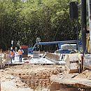 Operários em obra ao lado de bambuzal na manhã desta segunda (22)