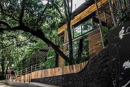 Visitar a Casa da Árvore, de Regi Amaral, é reviver a infância e ter um reencontro com referências que são um pouco de cada pessoa que chega ali