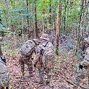 Buscas acontecem em áreas de matagal