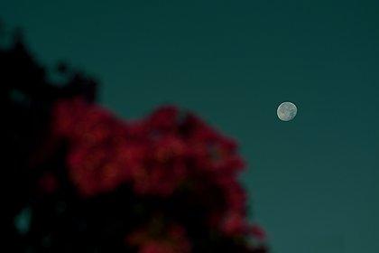 Céu do mês: ocultação de Marte pela Lua e início da primavera iluminam setembro