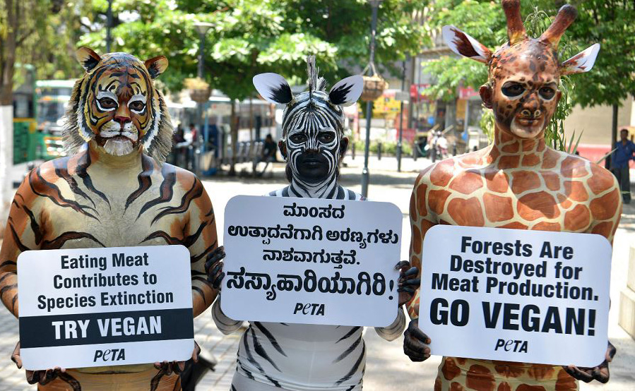 Ativistas do grupo PETA (pessoas para o tratamento ético dos animais) vestidos de girafa, zebra e tigre posam com cartazes durante uma manifestação em prol do veganismo , na cidade de Bangalore na Índia.