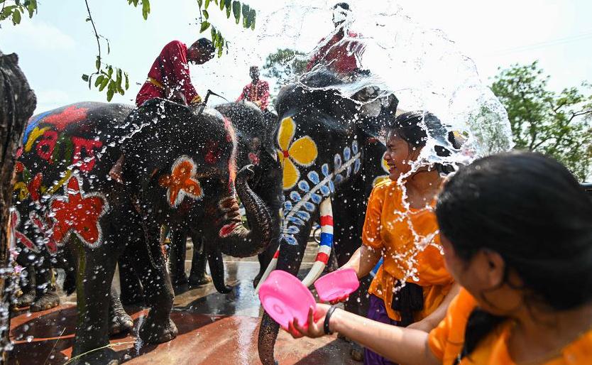 Elefantes decorados para o ano novo budista, conhecido localmente como Songkran, em Ayutthaya, na Tailândia.