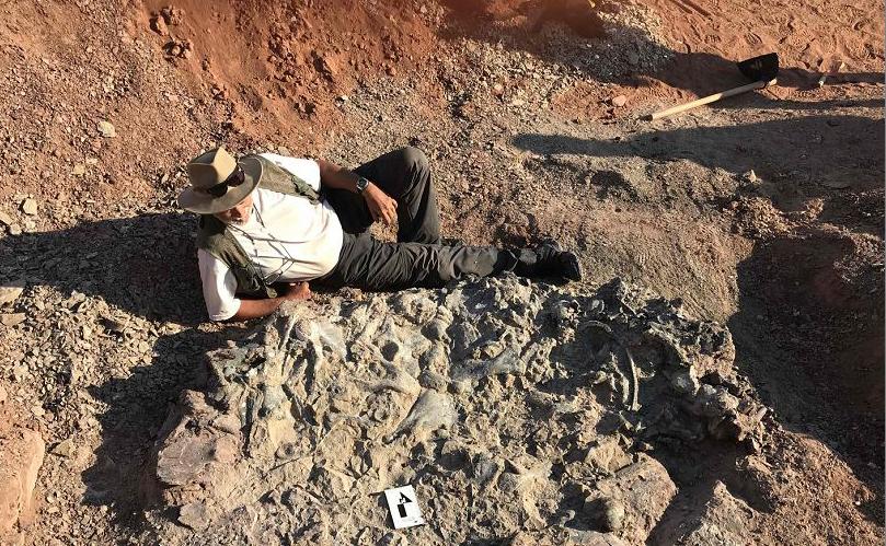O pesquisador argentino Ricardo Martinez posa ao lado de um fóssil de 220 milhões anos no Parque Nacional Ischigualasto, em San Juan provice, Argentina, um cemitério de dinossauro de 220 milhões anos.