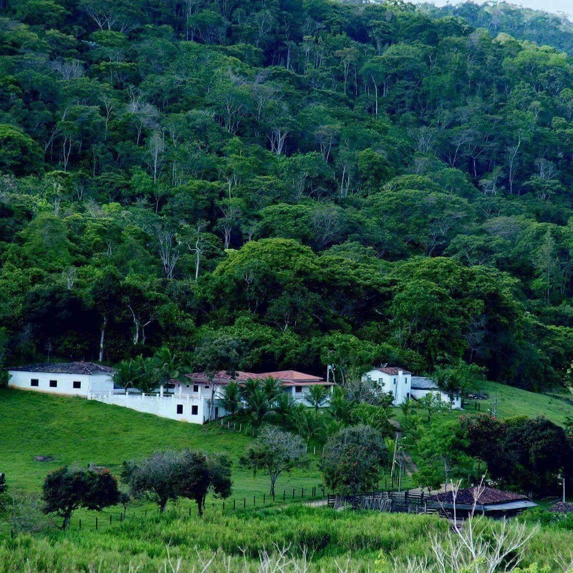 40 hectares de mata nativa foram preservados ao redor do Hotel Fazenda Princesa Ester, em Iguaí.